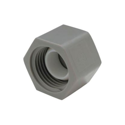 "Picture of QEST Qicktite (R) 1/2"" FPT Gray Acetal Test Cap  10-3142"