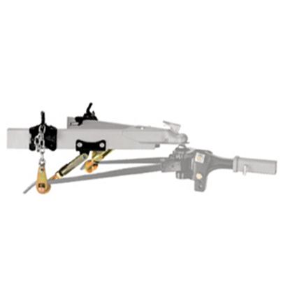 Picture of Reese Dual Cam Sway Control Kit 26002 14-0903