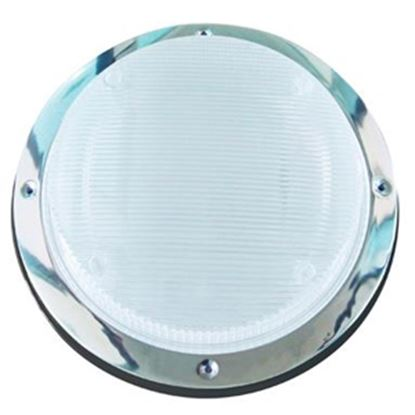 Picture of Starlights  Clear Round Scare Light 016-RSL2000B 18-0013